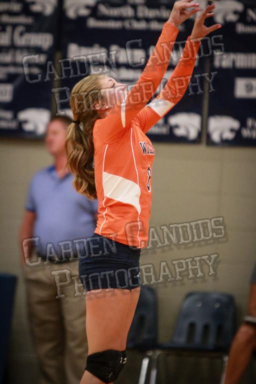 ND Varsity Volleyball vs Ellis-9-8-14-018