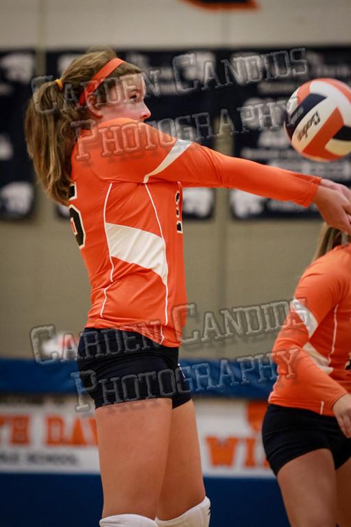 ND Varsity Volleyball vs Ellis-9-8-14-015