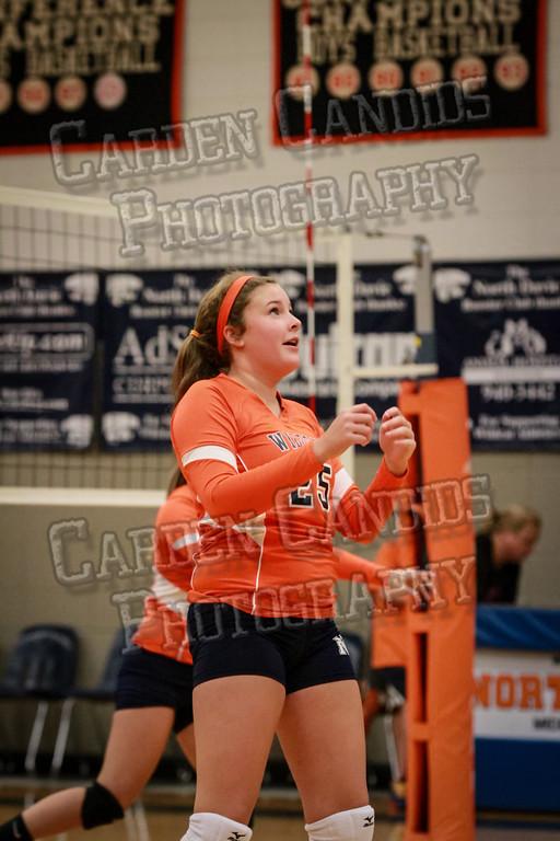 ND Varsity Volleyball vs Ellis-9-8-14-009