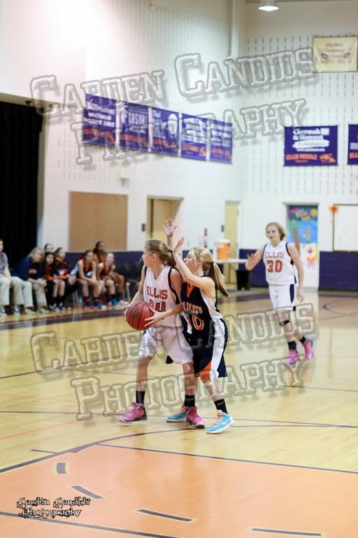 Wildcats Girls vs Ellis 1-16-14-052
