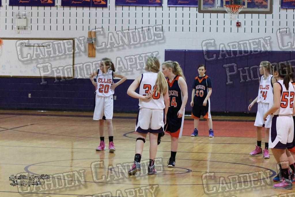 Wildcats Girls vs Ellis 1-16-14-001