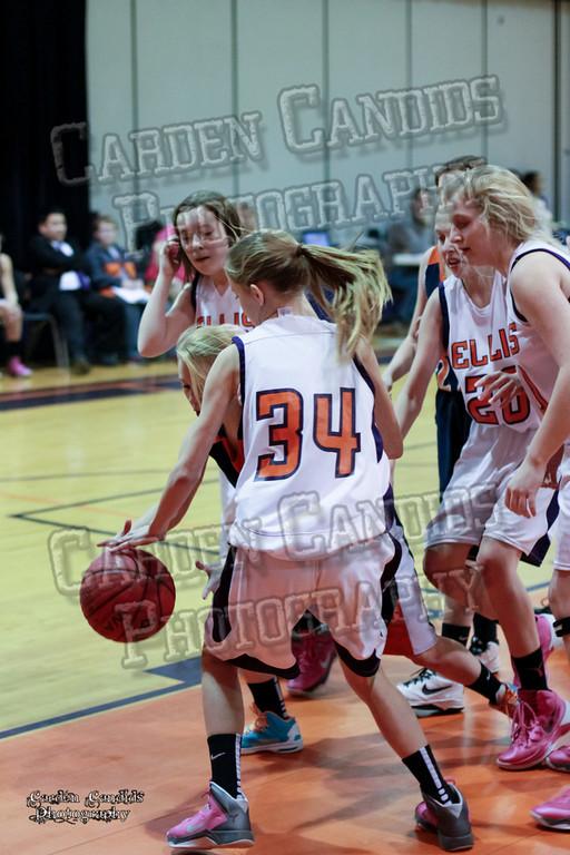 Wildcats Girls vs Ellis 1-16-14-046