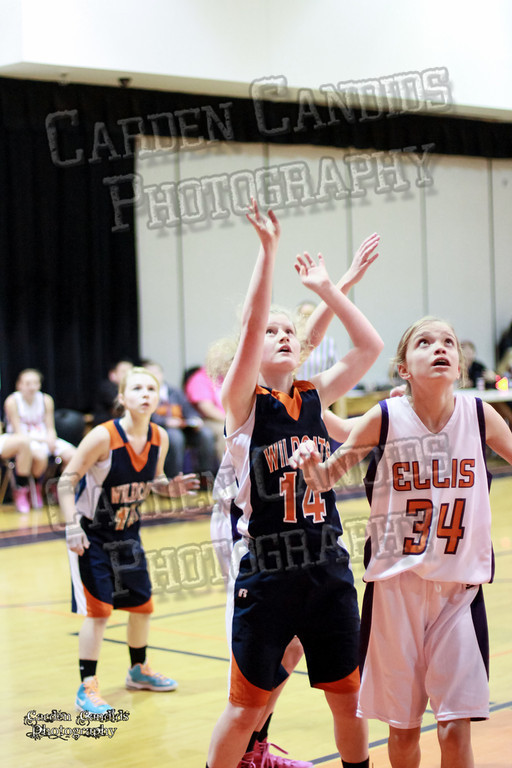 Wildcats Girls vs Ellis 1-16-14-064