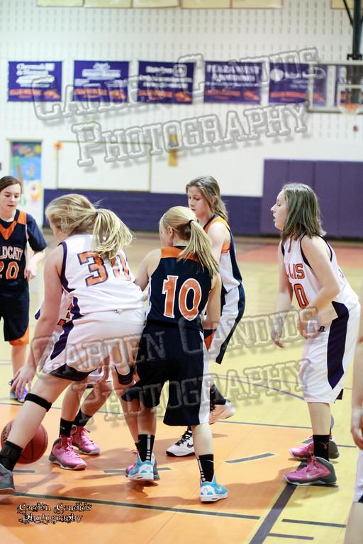 Wildcats Girls vs Ellis 1-16-14-057