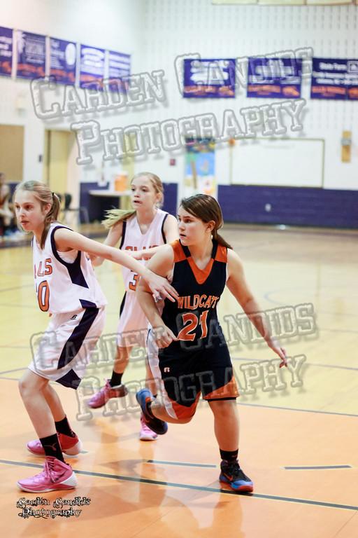 Wildcats Girls vs Ellis 1-16-14-035