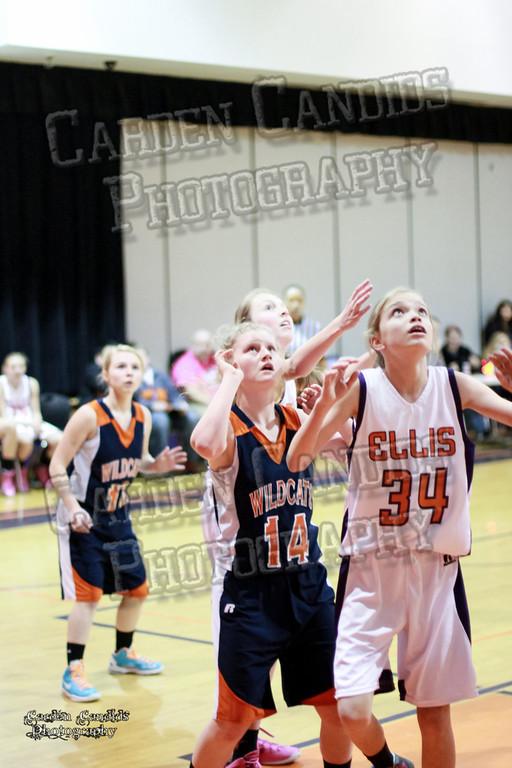 Wildcats Girls vs Ellis 1-16-14-065