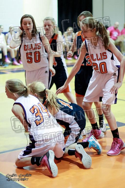 Wildcats Girls vs Ellis 1-16-14-049