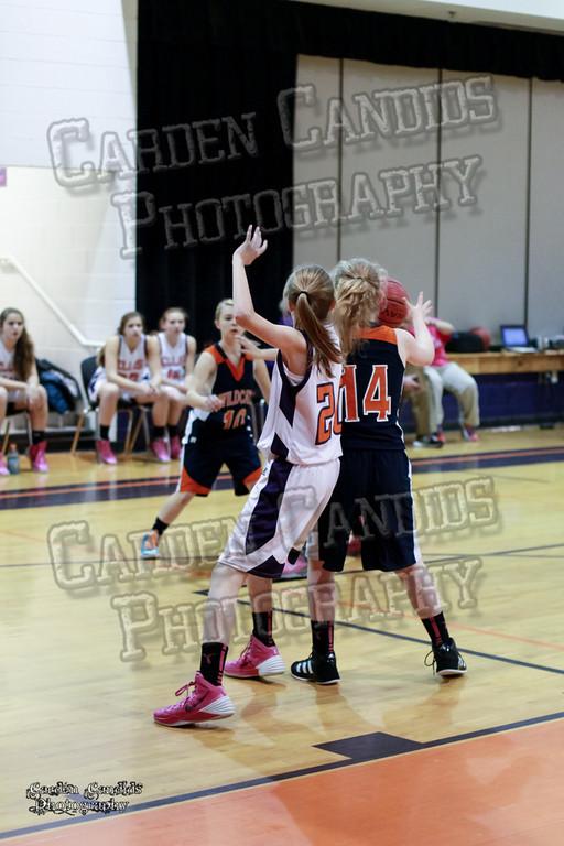 Wildcats Girls vs Ellis 1-16-14-024