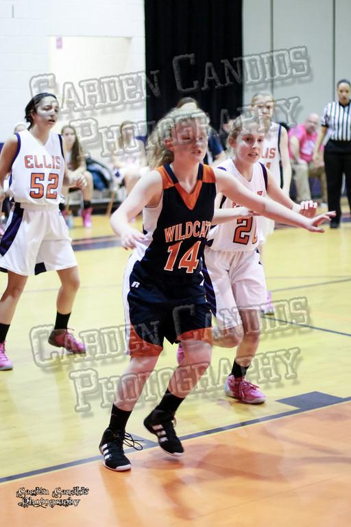 Wildcats Girls vs Ellis 1-16-14-063