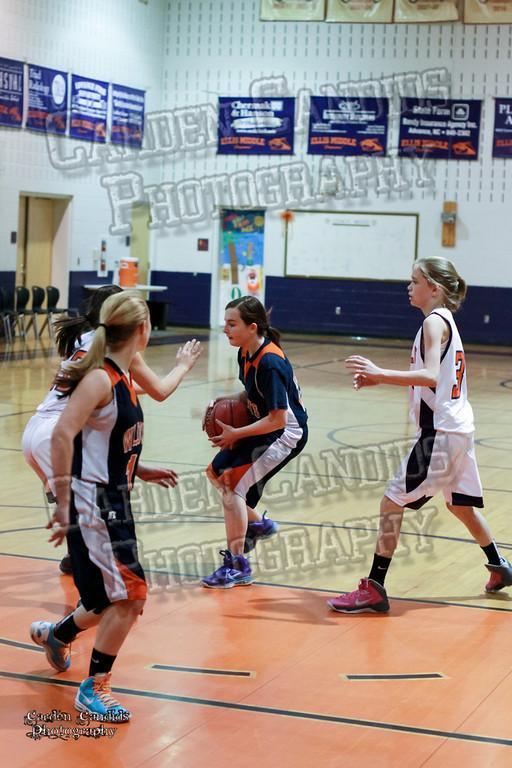 Wildcats Girls vs Ellis 1-16-14-056