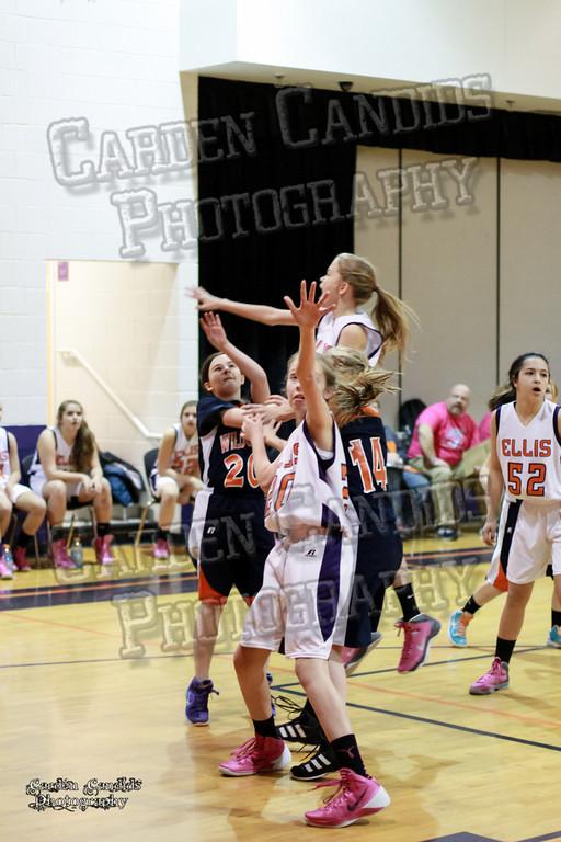 Wildcats Girls vs Ellis 1-16-14-031
