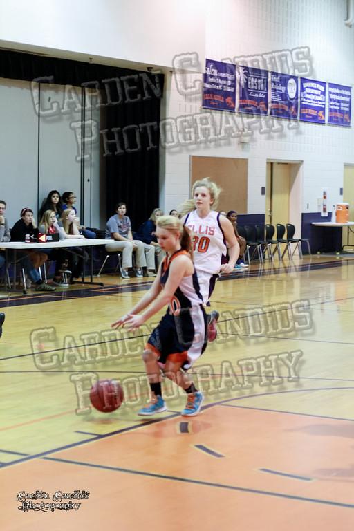 Wildcats Girls vs Ellis 1-16-14-037