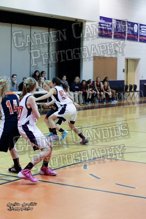 Wildcats Girls vs Ellis 1-16-14-022