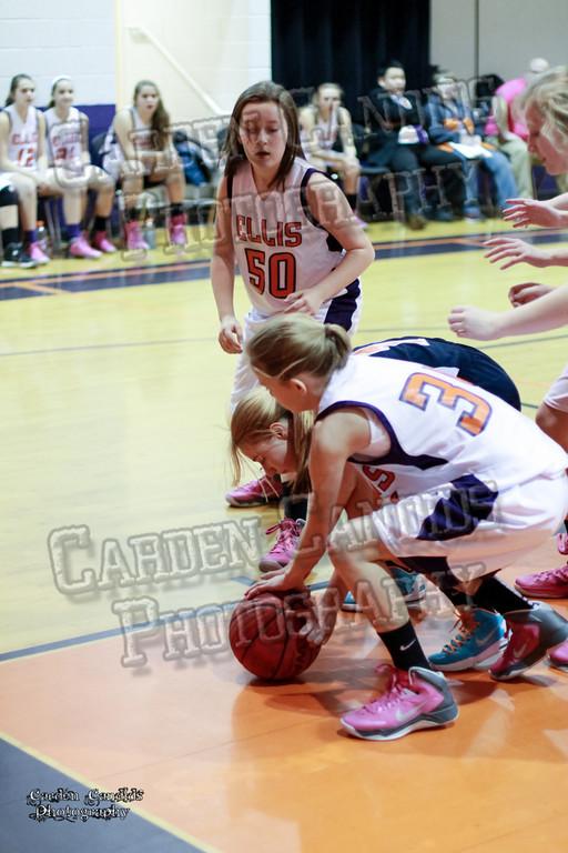 Wildcats Girls vs Ellis 1-16-14-047
