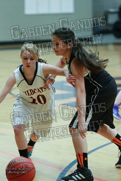 Wildcats Girls vs South Davie 1-27-14-023