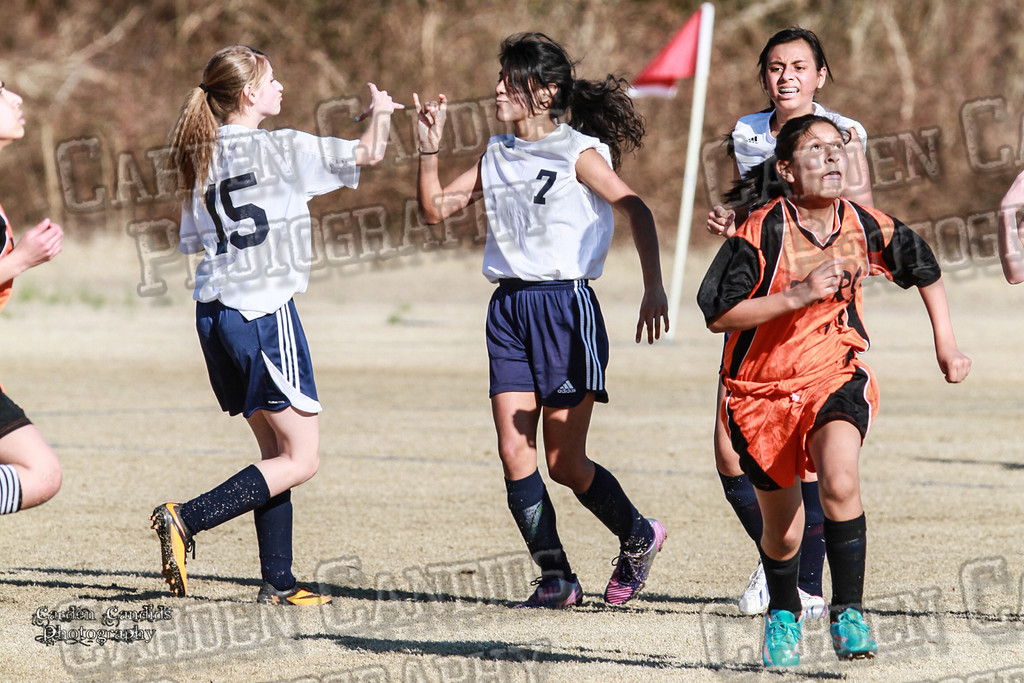North Davie vs South Davie 3-11-14-380