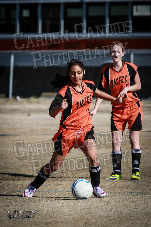 North Davie vs South Davie 3-11-14-009