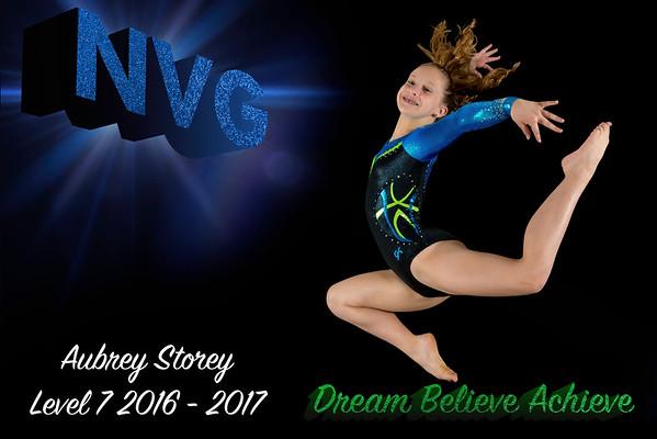 NVG GIRLS LEVEL 7-9 2016