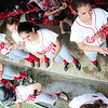Members of the Neshannock softball team cheer from the dugout. — Tiffany Wolfe