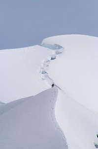 Two climbers on the SW Ridge of the Hochstetter Dome.