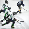 Whalers Tournament 2016_1379