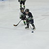 Whalers Tournament 2016_0482