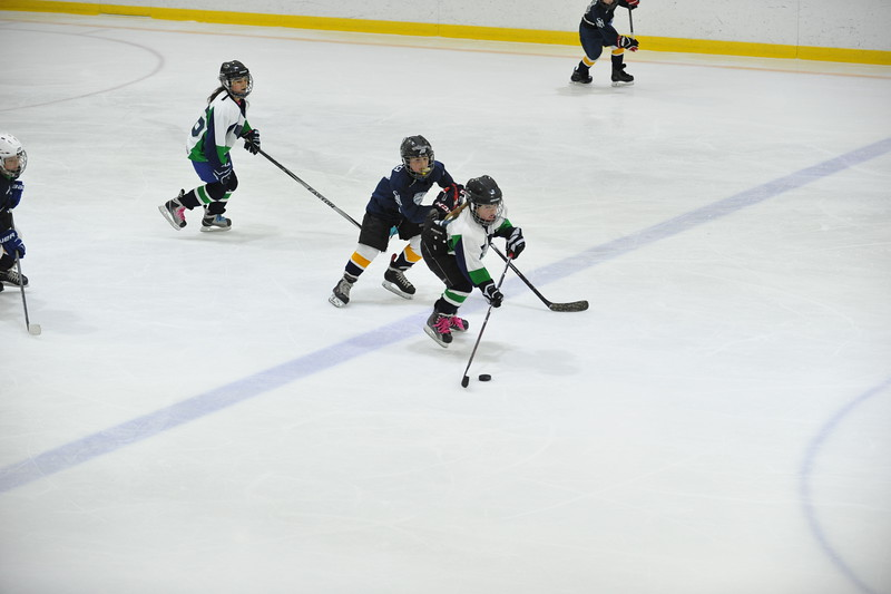 Whalers Tournament 2016_1206
