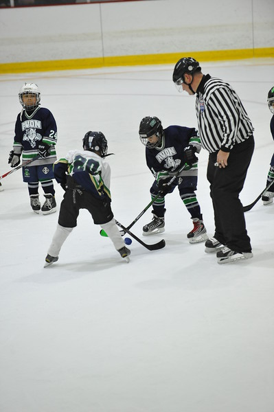 Whalers Tournament 2016_0843