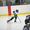 Whalers Tournament 2016_1141