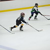Whalers Tournament 2016_1517