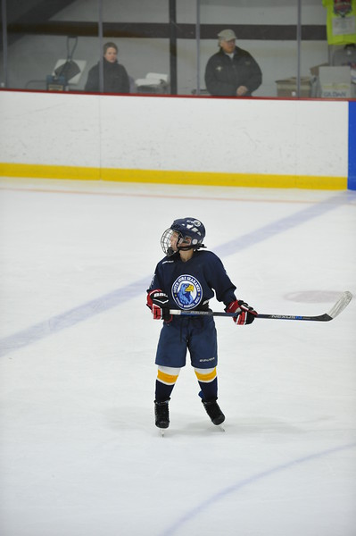 Whalers Tournament 2016_1510
