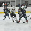 Whalers Tournament 2016_0457