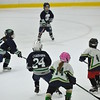 Whalers Tournament 2016_0755