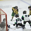 Whalers Tournament 2016_1000