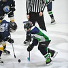 Whalers Tournament 2016_1514