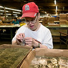 Joplin Workshops, Inc. employee David McGaugh assembles bags of catnip on Wednesday at the workshop.<br /> Globe | Laurie SIsk