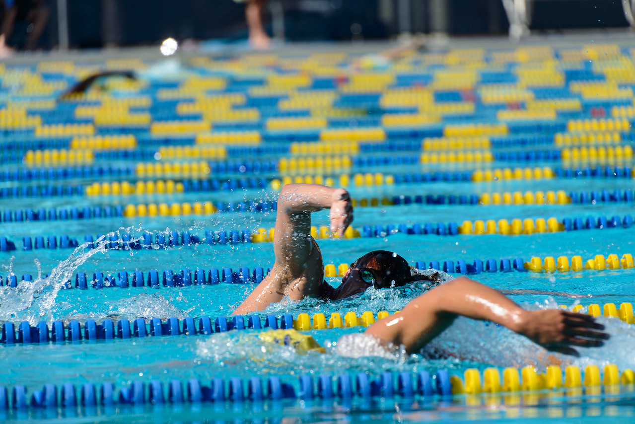 In the Men's mile, Jake Rollo swims steady despite losing his cap halfway through.