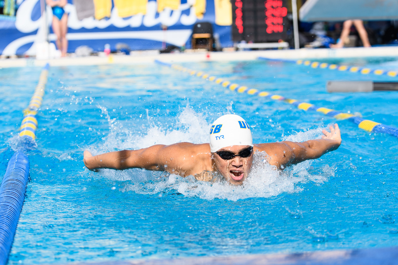 Senior Andy Lau swims the Men's 200 fly.