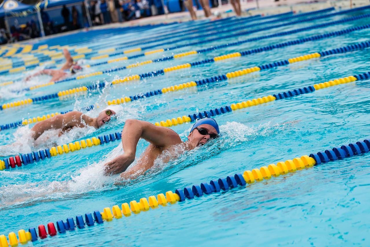 Matt Drum and Nick DeVito swim the 500 free with strokes in unison.