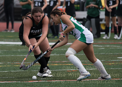 Nichols College Field Hockey vs Endicott