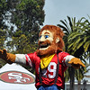 Niners Red and Gold Rally 9.12.2012 :