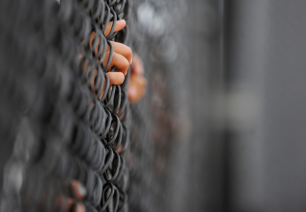 "The fingers of the Niwot High School softball team are seen in the dugout fence during the Colorado State 4A Championship game against Pueblo East High School on Saturday, Oct. 20, at the Aurora Sports Park in Aurora. Niwot lost the game 4-2.  For more photos of the game go to  <a href=""http://www.dailycamera.com"">http://www.dailycamera.com</a><br /> Jeremy Papasso/ Camera"