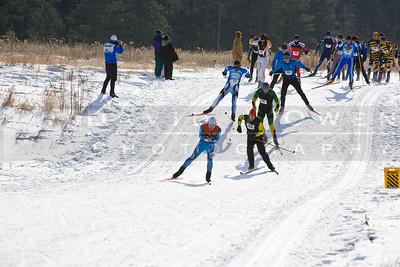 20090125-043 Freestyle race start
