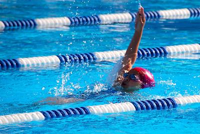 Norridge Swim Team
