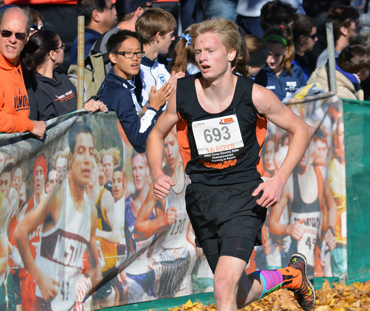 Altamont's Andrew Sharp makes his way through the course in Peoria during the Class 1A state cross country championships. Sharp finished 12th.