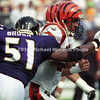 BALTIMORE, MD - SEPTEMBER 24: Quarter Back Scott Mitchell #19 of the Cincinnati Bengals avoids being sacked by Linebacker Takeo Spikes #51 of the Baltimore Ravens by quickly moving out of the pocket during a NFL game at PSINet Stadium on September 24, 2000 in Baltimore, Maryland. The Ravens won the game 37-0. (Photo by Michael J. Minardi) *** Local Caption *** Scott Mitchell;Takeo Spikes