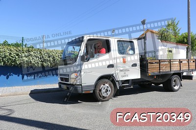 FCAST20349