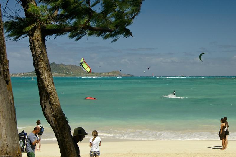 Windsurfing in Kailua-102