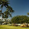 Windsurfing in Kailua-104