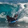 Spring surfing at Sandys-7
